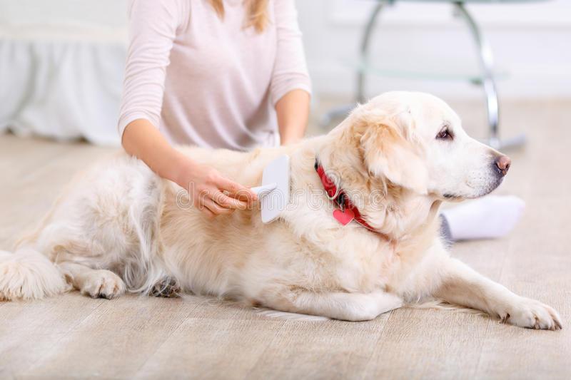 mujer-cepillando-perro